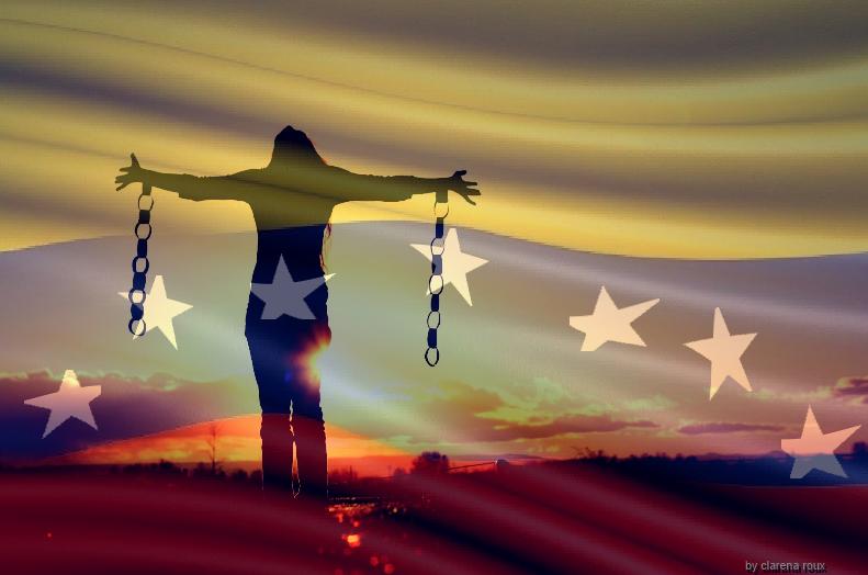 album-nav-bandera-venezuela-7-estrellas-7-firmada